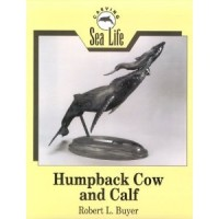 Carving Sea Life Humpback Cow and Calf