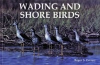 Wading and shorebirds